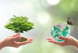 Гигиена и окружающая среда